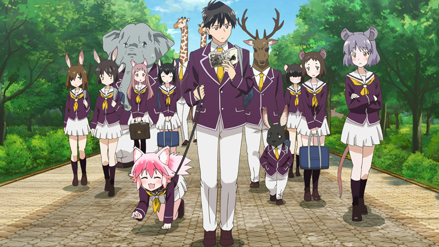 Jin walking Ranka on a leash, other students are staring